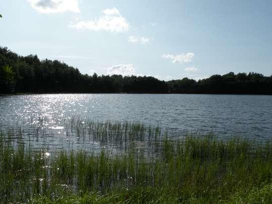 Atrakcje przyrodnicze okolic Rekowa i Płotowa